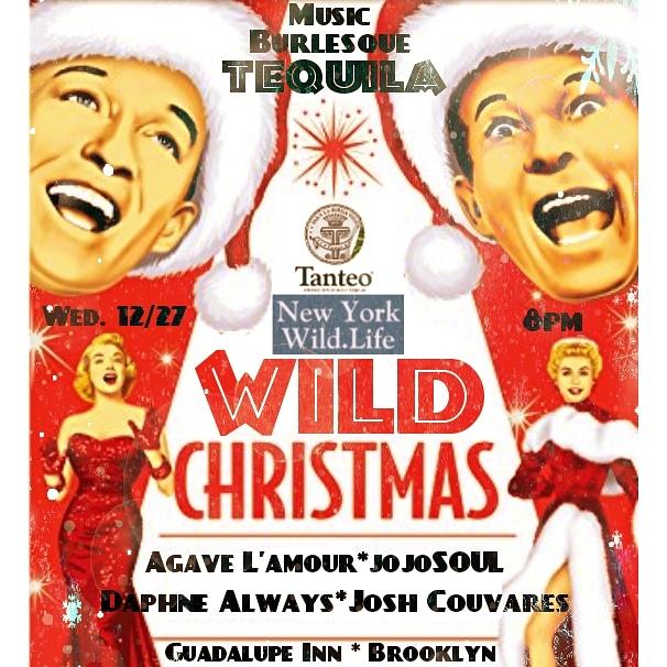 12/27/17- WILD CHRISTMAS at GuadalupeInn